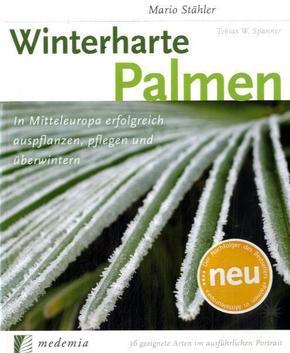 winterharte palmen innerhalb von 24 stunden vorr tig. Black Bedroom Furniture Sets. Home Design Ideas