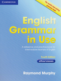 English Grammar in Use - Without answers