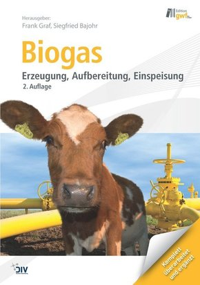 Biogas, m. DVD-ROM (eBook)