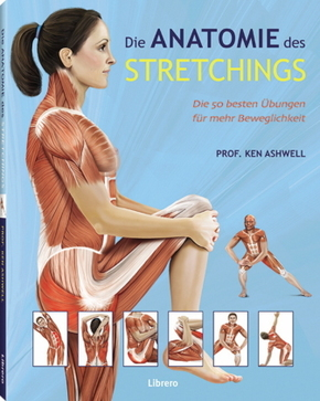 Die Anatomie des Stretchings